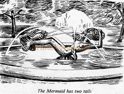 The Mermaid has two tails