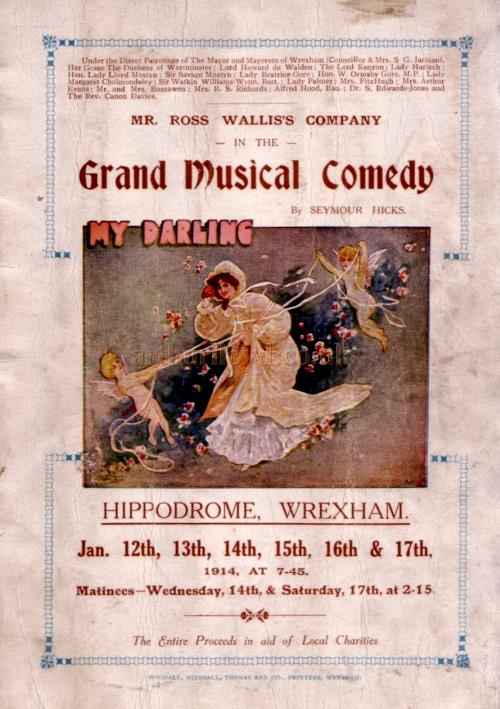A Programme for the 'Grand Musical Comedy' 'My Darling' by Seymour Hicks at the Wrexham Hippodrome in January 1914.